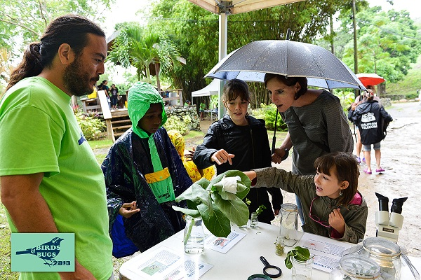 Rain didn't stop guests from coming to learn about local wildlife. (Photo by Chemaine Petit-Booi)
