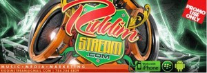 Riddim Stream logo