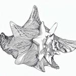 QC black_white drawing