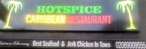 Hotspice Logo