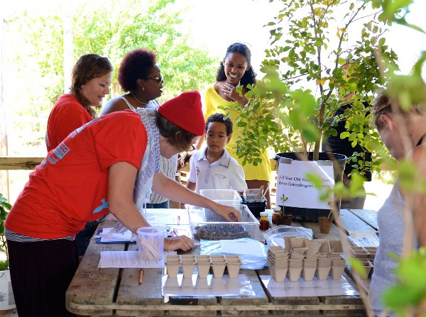 Over 100 sprouted Gaïac seeds were given away at the Festival's Tree of Life Workshop. (Photo by Marc Petrelluzzi)