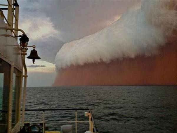 This Is How Saharan Dust from Africa Feeds Atlantic Ocean Life. Photo courtesy thescuttlefish.com