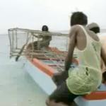 Classic Ad-Puma trainers taking over Jamaica!