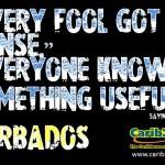 Every fool got e 'sense – Barbadian Saying #2