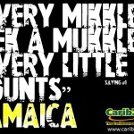 Every mikkle mek a mukkle – Jamaican Saying #1