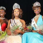 Miss Jamaica UK 2013 woos audience with beauty and intellegence
