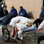 Three Chinese tourists dead in South Africa