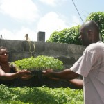 Suriname: FAO coordinates dialogue on family farming at Caribbean Week