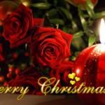 Merry Christmas from CaribDirect