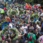 Carnival lovers could face entry charge in 2016