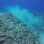 Cruise ship destroys Caribbean coral reef