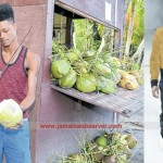 From chopping coconuts to the catwalk of Paris