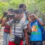 Caribbean Endemic Bird Festival Celebrates Year of the Bird