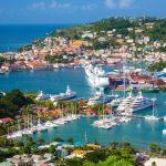Grenada Diaspora Policy stakeholder survey